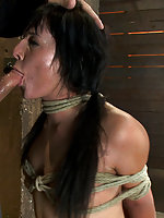 Cute girl next door gets severely bound, brutally deep throated