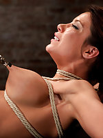Roped to spreader bars, tits-clasped, fingered and vibed