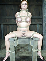 Roped, humiliated, dildoed and caned