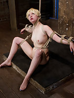 Hogtie suspension, crucifixion, bow, and folded spread eagle