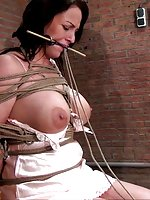 Damsel in a hard bondage - hogtied, bit-gagged, tit-grabbed