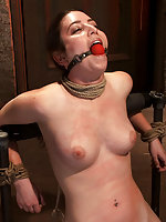 Local girl bound, flogged, clamped, made to suck cock, & cum
